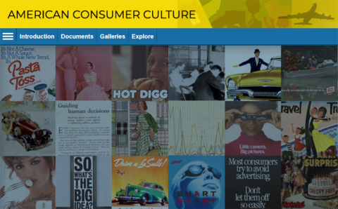 Screenshot of American Consumer Culture database start page.
