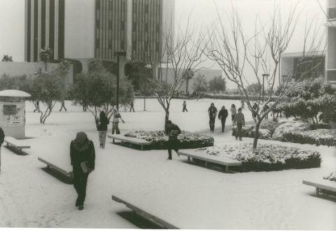People walking on UNLV Campus after a rare snowstorm, ca. 1980.